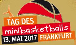 minibasketballs